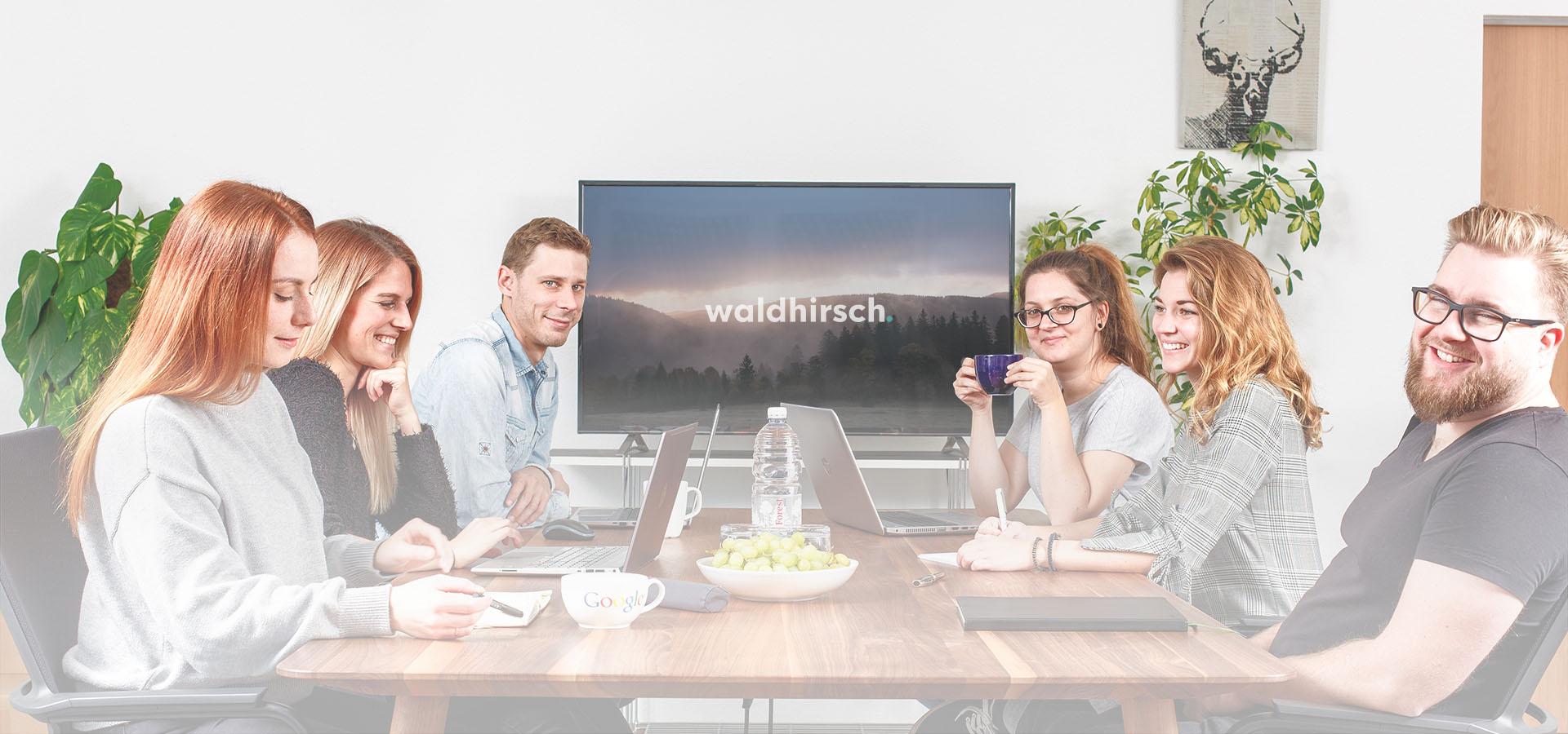 Team von Waldhirsch Marketing im Besprechungsraum