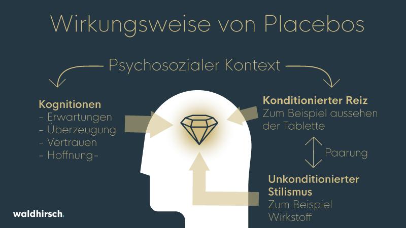 Abbildung der Einflüsse auf das Gehirn beim Placebo Effekt